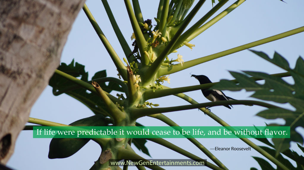 If life were predictable it would cease to be life, and be without flavor