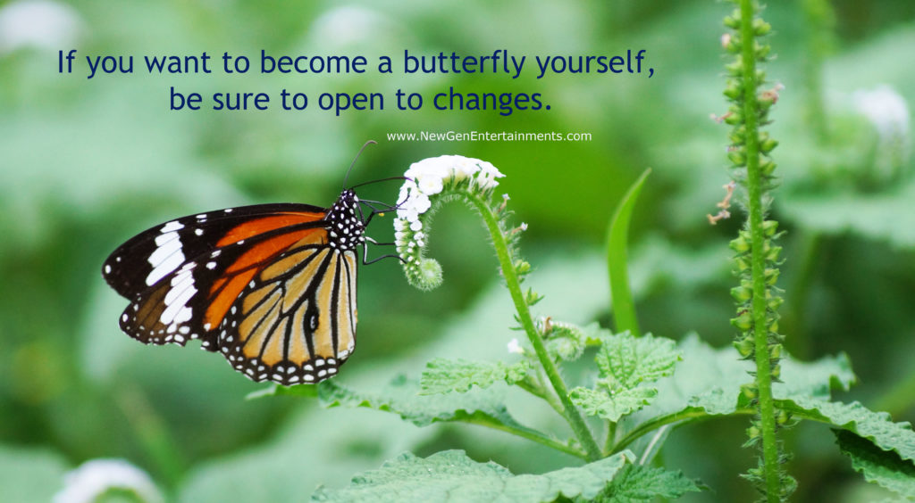 If you want to become a butterfly yourself, be sure to open to changes