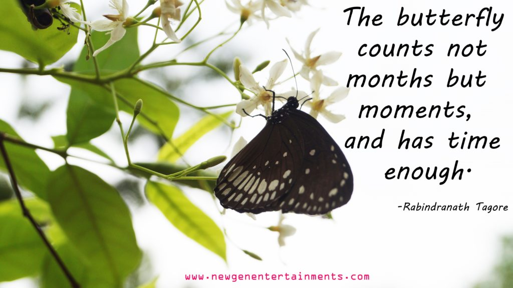 The butterfly counts not months but moments, and has time enough