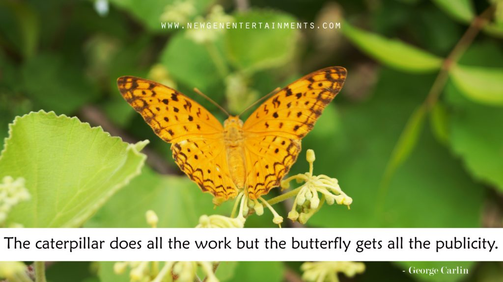 The caterpillar does all the work but the butterfly gets all the publicity