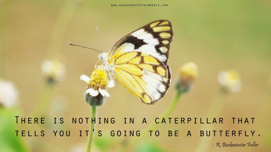 There is nothing in a caterpillar that tells you it's going to be a butterfly