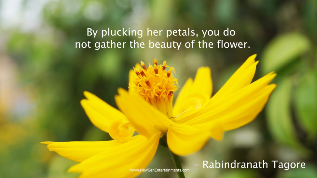 By plucking her petals, you do not gather the beauty of the flower