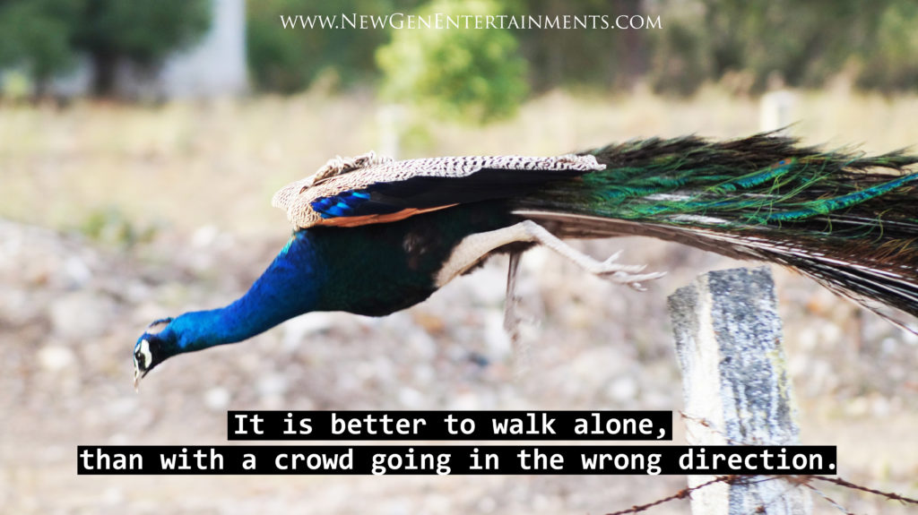 It is better to walk alone, than with a crowd going in the wrong direction